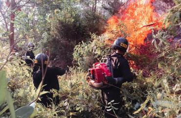 Lực lượng Công an tích cực tham gia chữa cháy rừng tại Hương Sơn