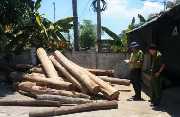 Bắt giữ ô tô chở gỗ không rõ nguồn gốc