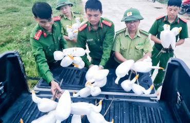 Công an huyện Hương Sơn phối hợp các lực lượng thu giữ hơn 1.800 dụng cụ bẫy chim