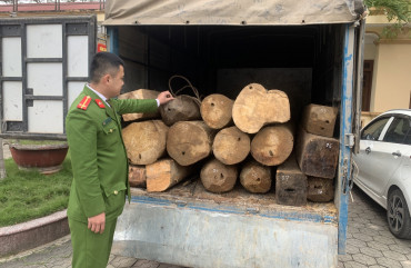Công an Can Lộc: Bắt xe tải chở gỗ lậu trong đêm